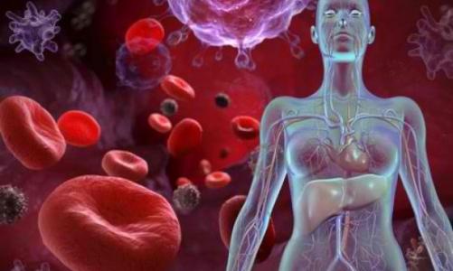 Употребление алкоголя при железодефицитной анемии